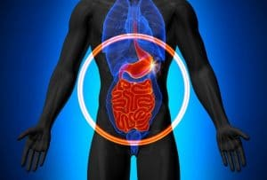 microbiome gut health