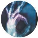 Collagen Bone Health